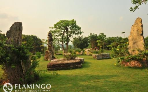 TOUR FLAMINGO ĐẠI LẢI 1 NGÀY